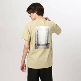 バックフォトTシャツ (サンドベージュ)
