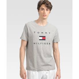 フラッグロゴ プリント Tシャツ (グレー)