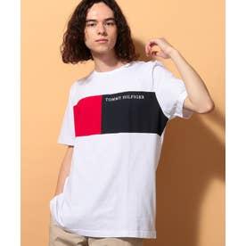 フラッグカラーブロックTシャツ (ホワイト)