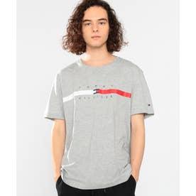 フラッグロゴTシャツ (グレー)
