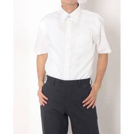 形態安定ノーアイロン ドゥエボットーニボタンダウン 半袖ビジネスワイシャツ (ライトイエロー)