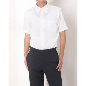 形態安定ノーアイロン Wガーゼ ボタンダウン 半袖ビジネスワイシャツ (ホワイト)