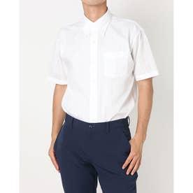 形態安定ノーアイロン COOLMAX(R) ボタンダウン 半袖ビジネスワイシャツ (ホワイト)